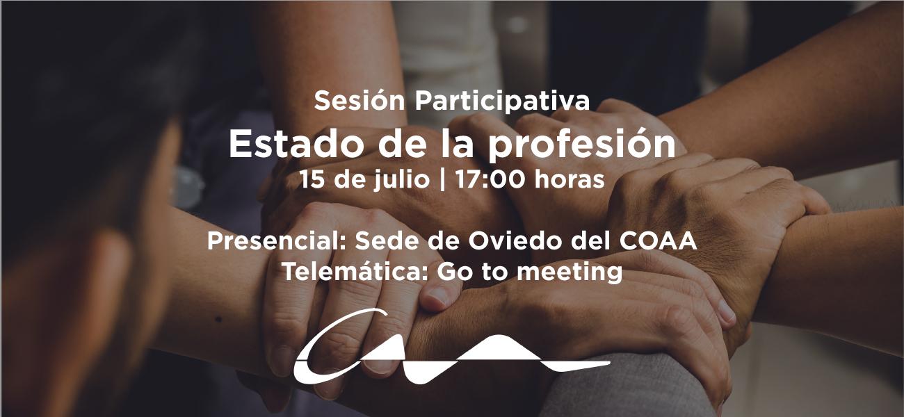 Sesión participativa sobre el estado de la profesión