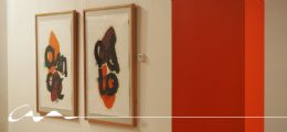 Debate sobre el proyecto La Aventura del Color de Bernardo Sanjurjo en el COAA