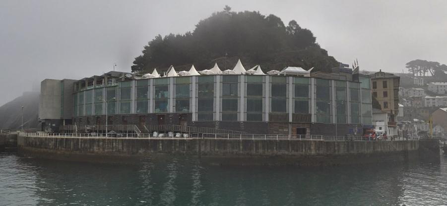 El COAA recurre la licitación de la reforma del aula del calamar gigante de Luarca
